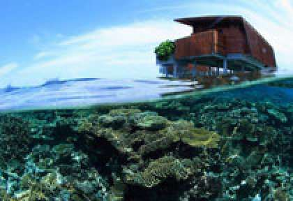 House Reef au Park Hyatt Maldives